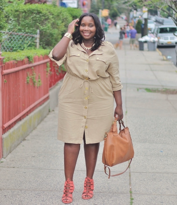 Shirtdress Chic