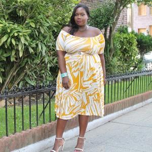 Rachel Pally Lovely Dress.1