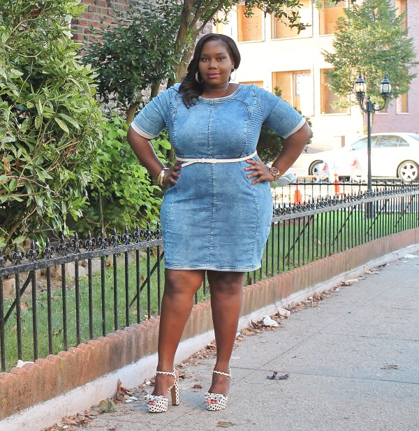 a8757f3ecc2 My Favorite Summer Denim Sheath Dress