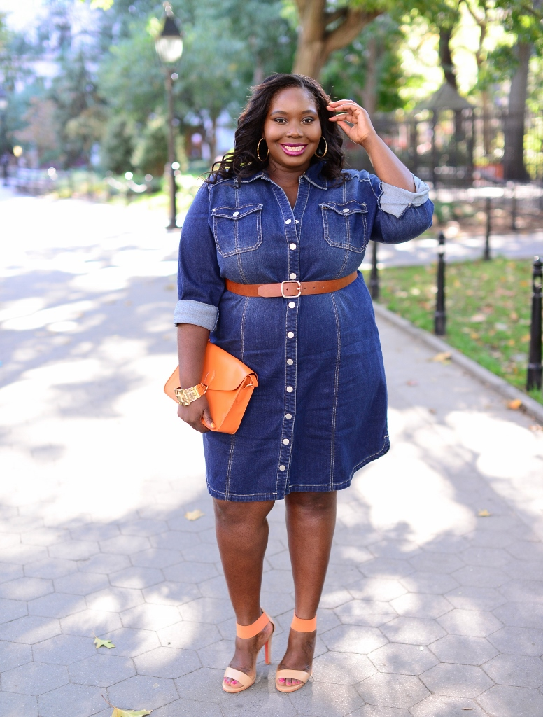 Style Journey Fall Chic In Inc Plus Size Fitted Denim Shirtdress